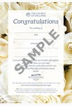Wedding Celebration Keepsake Card (pack of 10)