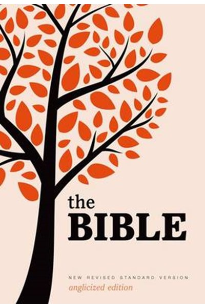 New Revised Standard Version Bible: Popular Text Edition