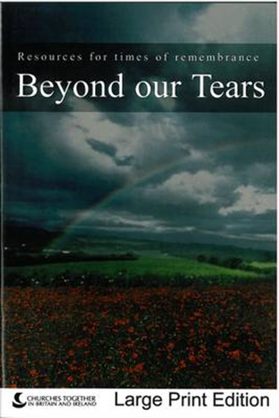 Beyond Our Tears (Large Print edition)