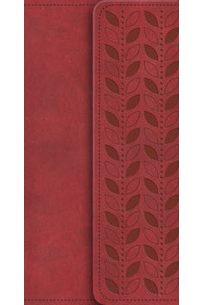NIV Diary Cherry Soft-Tone Bible with Clasp