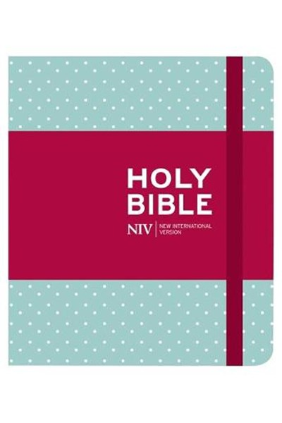 NIV Journalling Bible