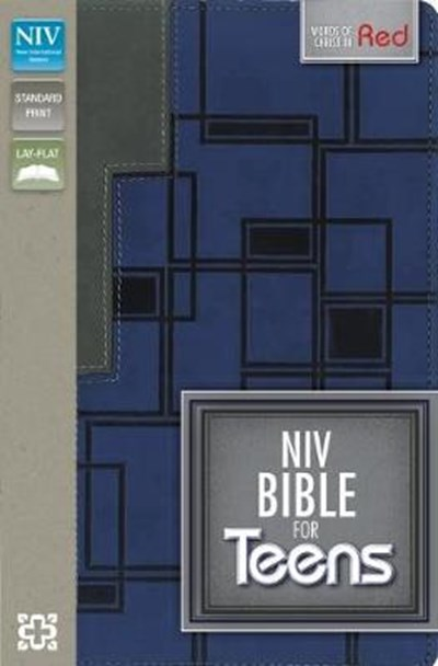 NIV Bible for Teens Charcoal/Blue Duo Tone
